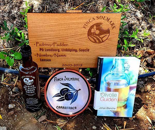 Apadrina un olivo certificado madera