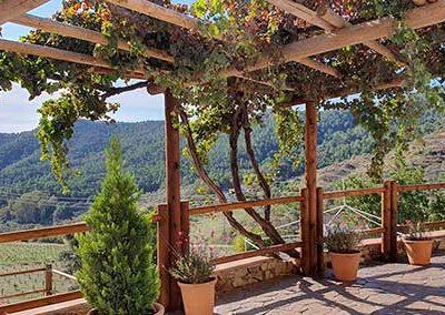 finca_solmark_i_jornada_puertas_abiertas_medioambiente_ecologia_turismo_12