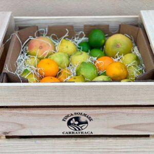 Ekologisk citrusfrukt från Andalusien