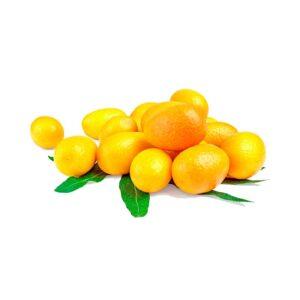 Ekologisk Kumquat - Finca Solmark