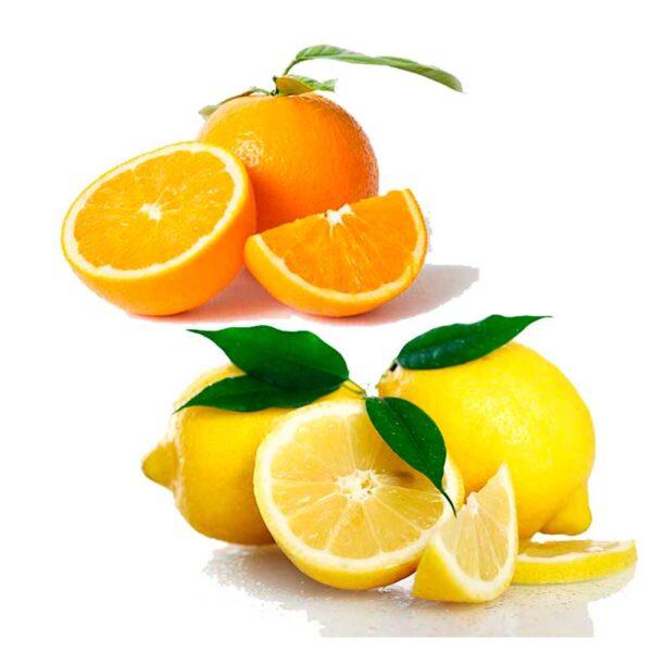 Ekologisk Apelsin och Citron - Finca Solmark