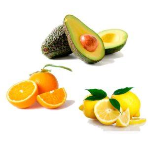 Ekologisk HASS Avokado - Apelsiner - Citroner - Finca Solmark