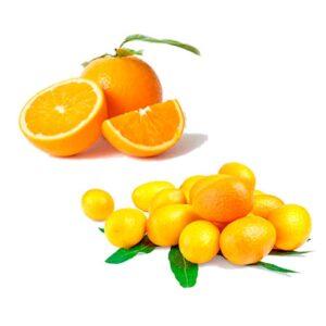 Ekologisk Apelsin och Kumquat - Finca Solmark
